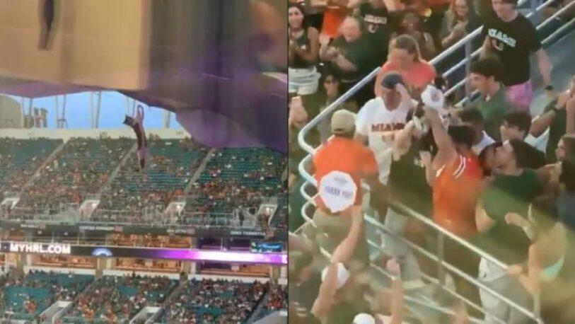 Impactante rescate de un gato en un estadio de EE.UU.