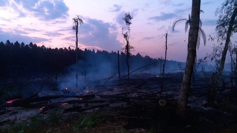 Intervinieron en 33 incendios en los últimos días