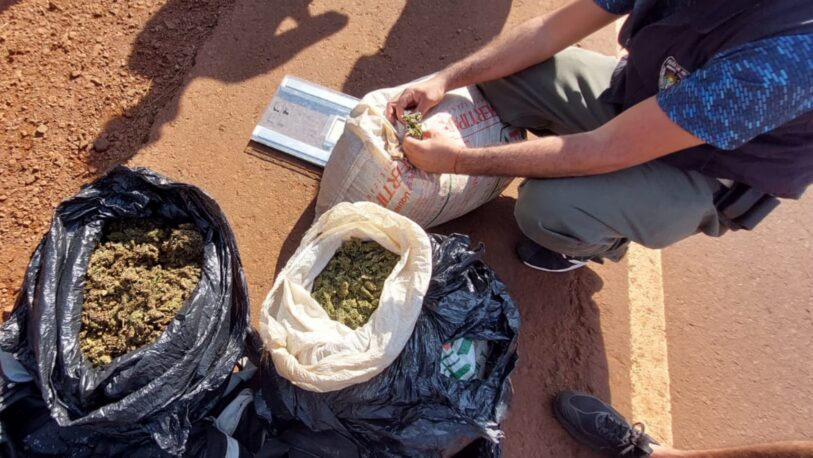Llevaban casi 20 kilos de marihuana en un remis