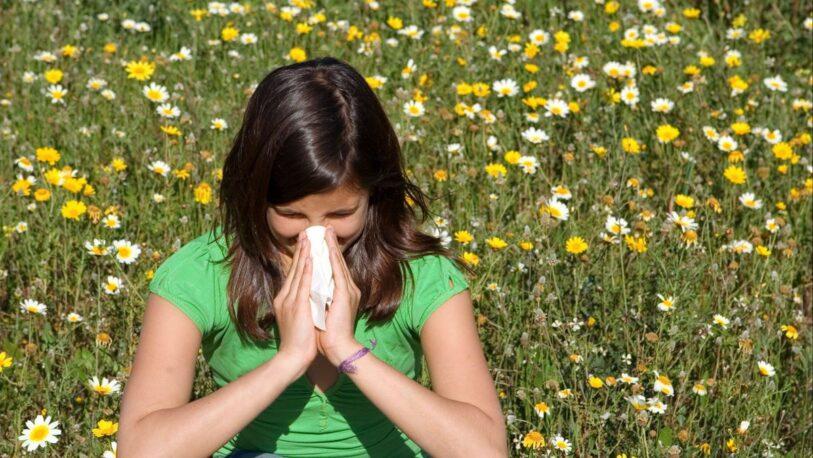 Qué hacer para combatir la alergia primaveral