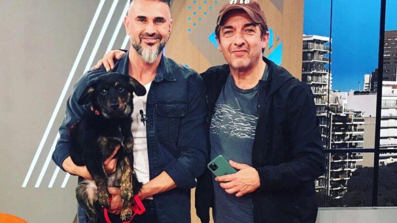 Ricardo Darín irrumpió en un programa para ayudar a un perro perdido