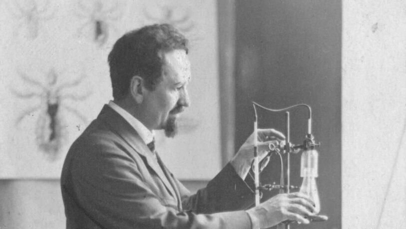 Doodle: Rudolf Weigl, el inventor de la vacuna contra el Tifus