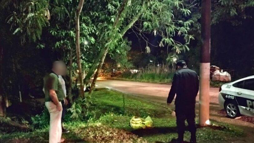 Secuestraron panes de marihuana en un espacio verde de Eldorado