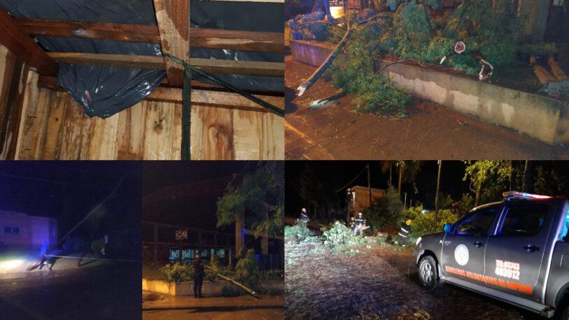 Temporal en Misiones: cortes de luz, árboles caídos y pérdidas de techos